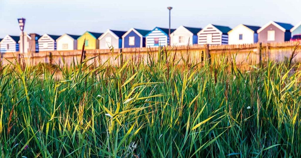 Southwodl beach huts from Durrants
